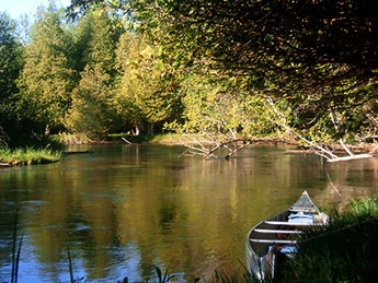 Manistee River Paddlesports