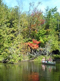 manistee river canoe trip