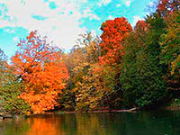 Fall canoe trips on the Manistee River